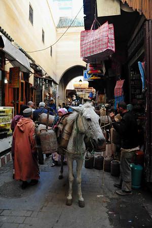 MOROCCO – The Endless Fes Medina