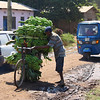 "A man pushes a bike full of bananas through the streets of Mto wa Mbu:<br /> <br /> <a href=""http://nomadicsamuel.com/photo-essays/the-people-of-tanzania"">http://nomadicsamuel.com/photo-essays/the-people-of-tanzania</a>"