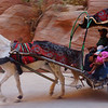 The echoing sound of galloping horses is one in which you'll learn to familiarize yourself with when visiting Petra.