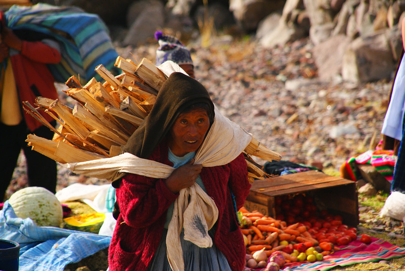 "A hunchbacked elderly lady carries a heavy load of what appears to be kindling on her back:<br /> <a href=""http://nomadicsamuel.com/photo-essays/lake-titicaca-uros-puno-peru"">http://nomadicsamuel.com/photo-essays/lake-titicaca-uros-puno-peru</a>"