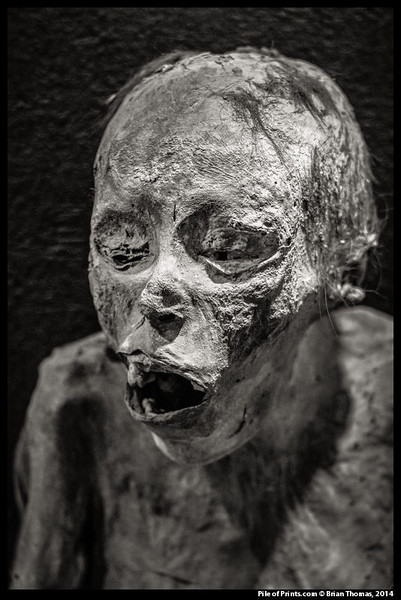 The insolvent individuals displayed in the Guanajuato Mummy Museum died in the cholera epidemic of 1833. To prevent them from communicating their disease they were hastily interred.