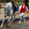 A young boy beaming a smile and performing equestrian tricks at the Korean Folk Village located in Yongin, South Korea.