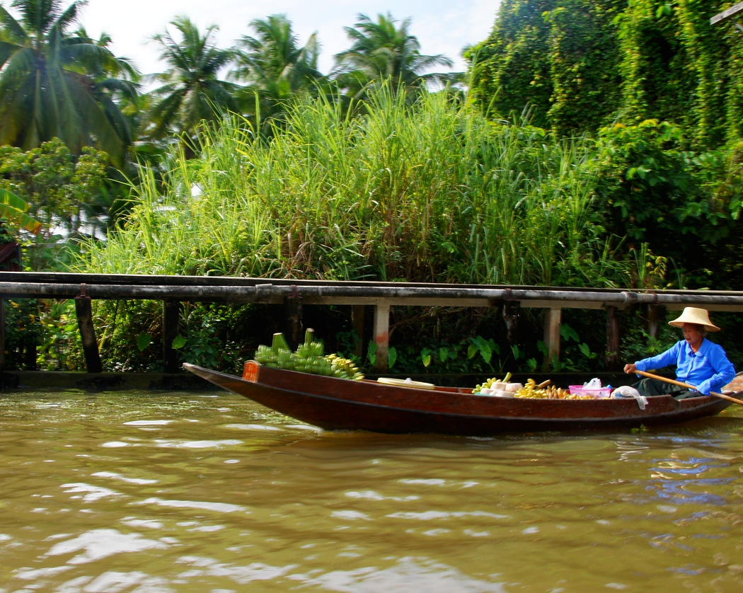 This is a side perspective shot of a Thai lady rowing a boat loaded with fruit to the floating market.