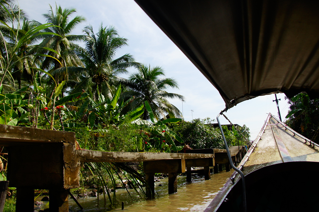 Scenic views from our longboat of lush green vegetation and murky brown waters prior to reaching the Thai floating market.