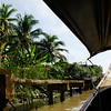 Scenic views from our longboat of lush green vegetation and murky brown waters prior to reaching the Thai floating market