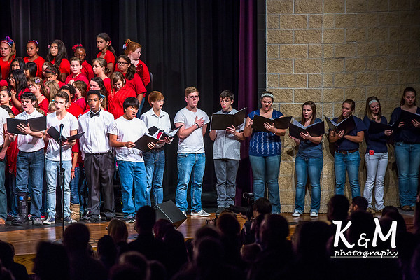 2014-11-11 AHS Choir Veteran's Day Concert 5.jpg