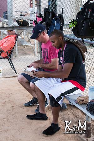 Pluck Softball Benefit