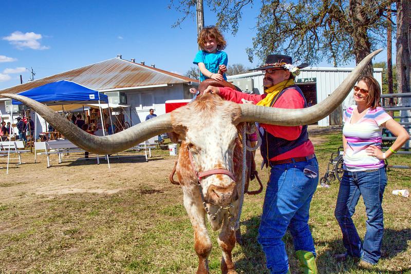 Texas Longhorn, of course!
