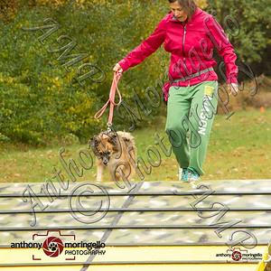dirtydog_0040-50092