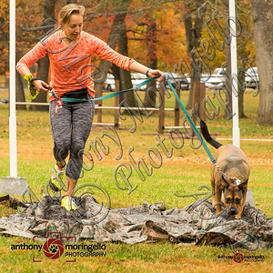 Heeling House Dirty Dog Race - Fall 2015