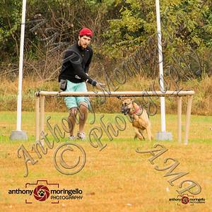 dirtydog_0018-32043
