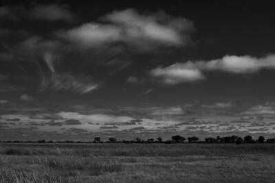 Duba Plains