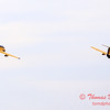 650 - Friday Practice at the Quad City Air Show - Davenport Municipal Airport - Davenport Iowa - August 31st