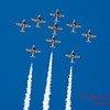 1342 - The RCAF Snowbirds performance at Wings over Waukegan 2012