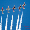 1451 - The RCAF Snowbirds performance at Wings over Waukegan 2012
