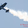 323 -  2015 Milwaukee Air & Water Show - Bradford Beach - Milwaukee Wisconsin