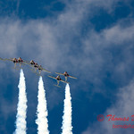 1420 - The RCAF Snowbirds performance at Wings over Waukegan 2012