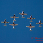 1594 - The RCAF Snowbirds performance at Wings over Waukegan 2012