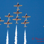 1417 - The RCAF Snowbirds performance at Wings over Waukegan 2012