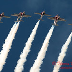 1599 - The RCAF Snowbirds performance at Wings over Waukegan 2012