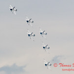 1165 - US Air Force Thunderbirds Sunday performance in F16 Fighting Falcons at the 2012 Rockford Airfest - Chicago Rockford International Airport - Rockford Illinois - Sunday June 3rd 2012