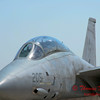 16 - The arrival of a F14 Tomcat completing its last flight -  Bloomington Illinois - April 13 2006