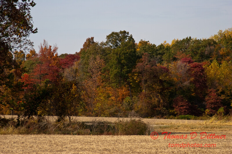 2010 - Covered Bridge Festival (red route) - Parke County Indiana - Monday  October 11th - 81