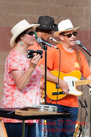 56 - 2015 Concert Series - Connie Link Amphitheatre - Normal Illinois