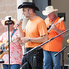 31 - 2015 Concert Series - Connie Link Amphitheatre - Normal Illinois