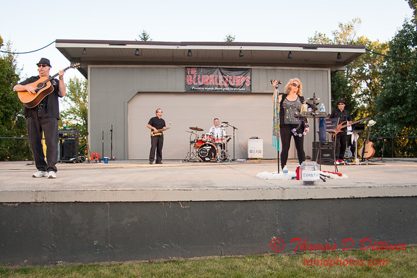 2014 Music under the Stars - The Blurklezurps