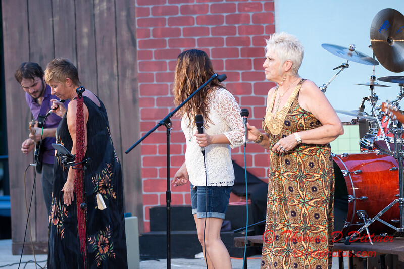 2014 Music under the Stars - New and Slightly Used