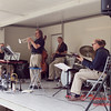 8 - 2015 Lunchtime Concert - Withers Park - Bloomington Illinois