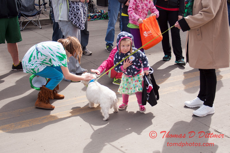 216 - 2015 Sharing of the Green, St. Patrick's Day Parade - Normal Illinois
