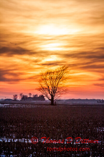# 18 - Late afternoon in Eastern Rural McLean County Illinois
