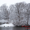 1 - Wooded areas surrounding Lake Evergreen on a snowy day - Northern McLean County Illinois - Monday December 1st 2008