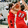 4 - Carthage Lady Reds at Illinois Wesleyan Fighting Titans