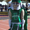 16 - 2015 NCAA Div III Football - Millikin University at Illinois Wesleyan University - Tucci Stadium - Bloomington Illinois