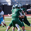 (# 243) Elmhurst College at Illinois Wesleyan University Senior Day