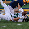 2018 Illinois Wesleyan University at Augustana College #300