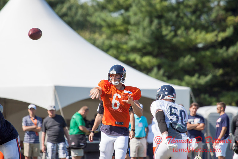12 - 2015 Chicago Bears training camp scrimmage - Olivet-Nazarene University - Bourbonnais Illinois