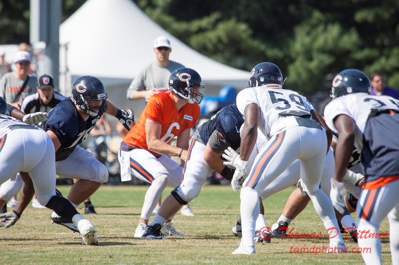 7 - 2015 Chicago Bears training camp scrimmage - Olivet-Nazarene University - Bourbonnais Illinois