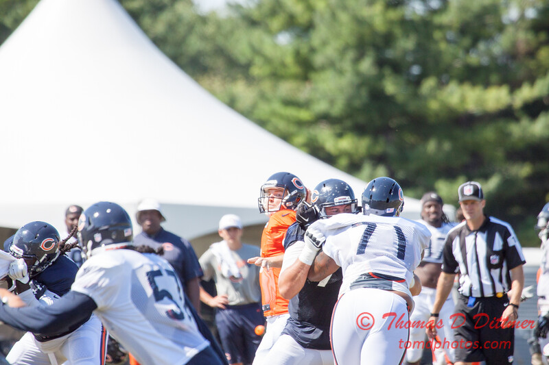 47 - 2015 Chicago Bears training camp scrimmage - Olivet-Nazarene University - Bourbonnais Illinois