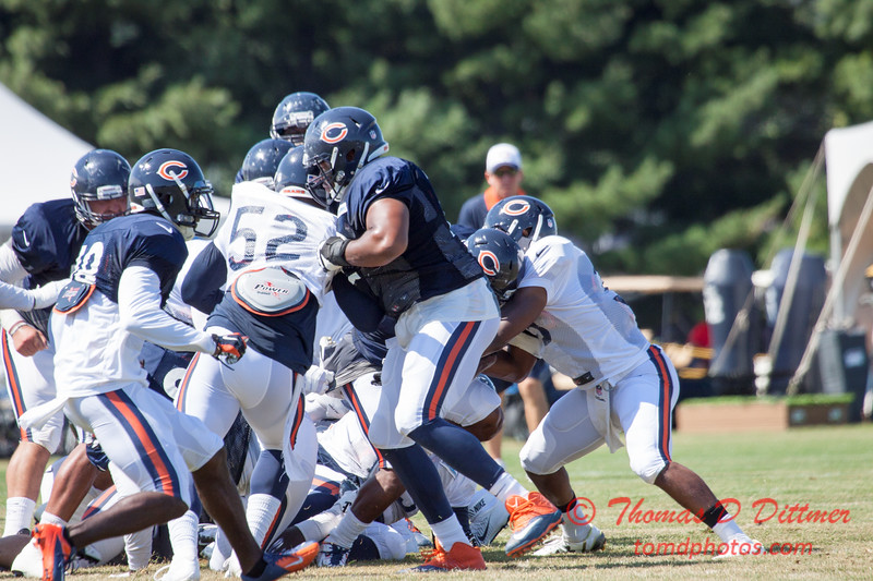 41 - 2015 Chicago Bears training camp scrimmage - Olivet-Nazarene University - Bourbonnais Illinois