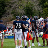 Chicago Bears Training Camp - #3