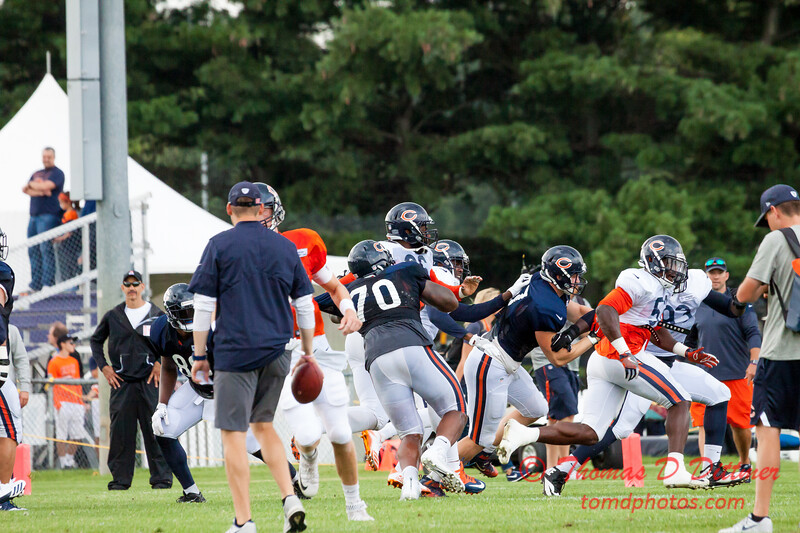 Chicago Bears Training Camp - #31