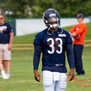 Chicago Bears Training Camp - #7