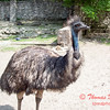 Washington Park Zoo - Michigan City Indiana - #38
