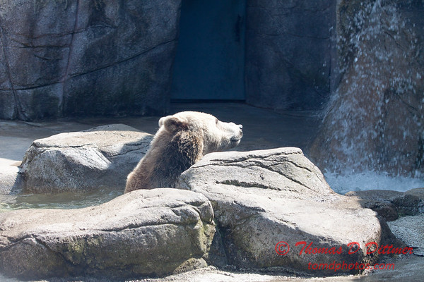 Washington Park Zoo - Michigan City Indiana - #33
