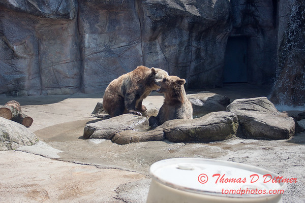 Washington Park Zoo - Michigan City Indiana - #28