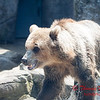 Washington Park Zoo - Michigan City Indiana - #31